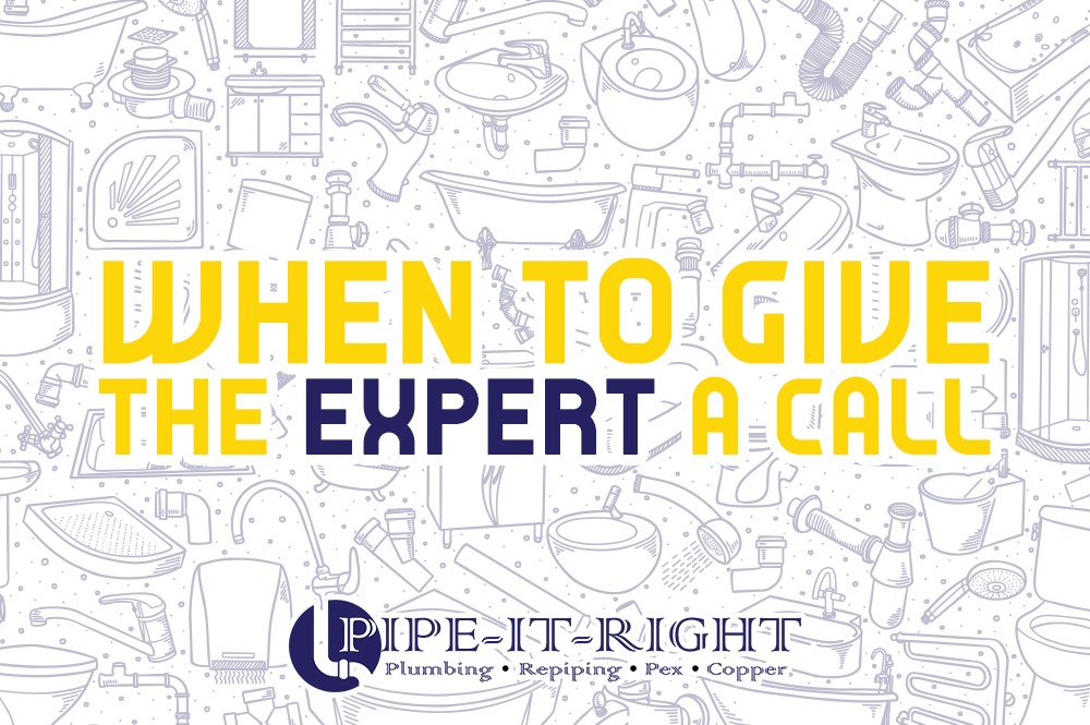 When to Give the Expert a Call